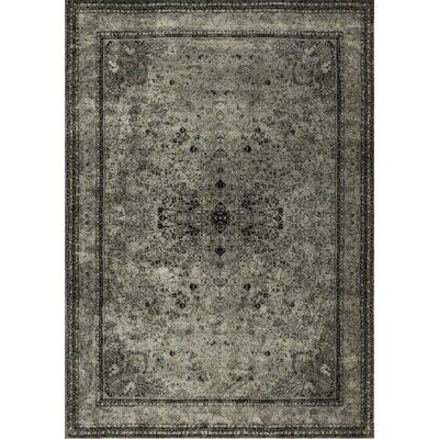 Nyla Gray Area Rug Rug Size: Rectangle 92 x 122