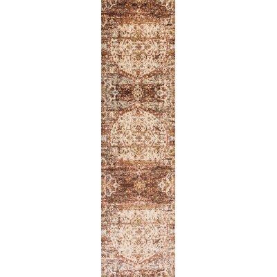 Zehner Rust/Ivory Area Rug Rug Size: Runner 27 x 12