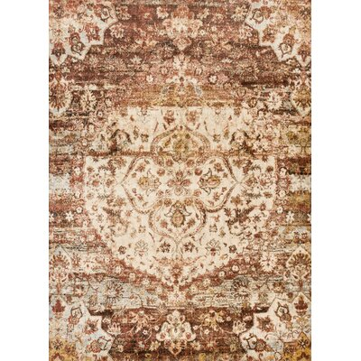 Anastasia Rust/Ivory Area Rug Rug Size: Rectangle 3'7