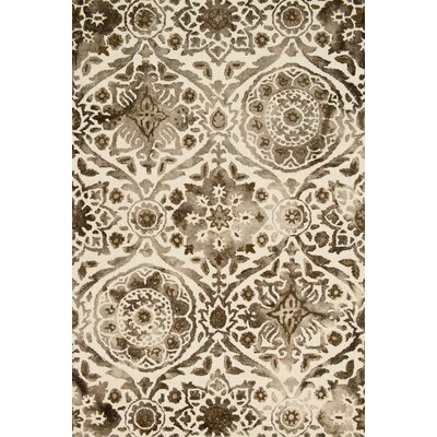 Kirsch Hand-Hooked Taupe Area Rug Rug Size: Rectangle 79 x 99