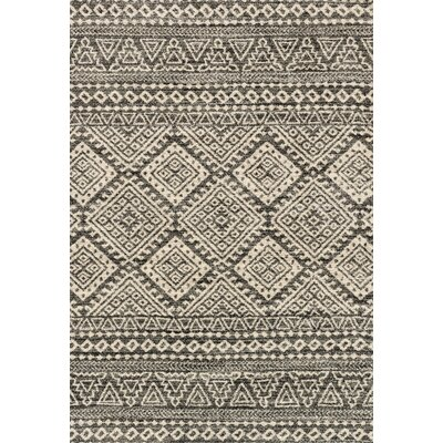 Aparicio Graphite Gray Area Rug Rug Size: Rectangle 53 x 77