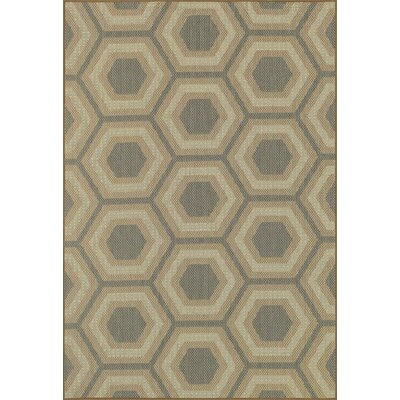 Capri Moss Indoor/Outdoor Area Rug Rug Size: 24 x 39