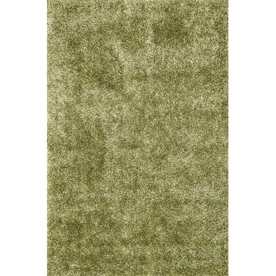 Carrera Shag Hand-Tufted Green Area Rug Rug Size: 36 x 56
