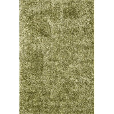 Carrera Shag Hand-Tufted Green Area Rug Rug Size: Rectangle 79 x 99
