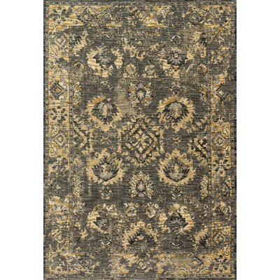 Izmir Gray Area Rug Rug Size: Rectangle 28 x 12