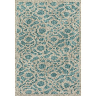 Newport Aqua/Gray Indoor/Outdoor Area Rug Rug Size: 22 x 39