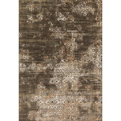 Kingston Brown Area Rug Rug Size: 310 x 57