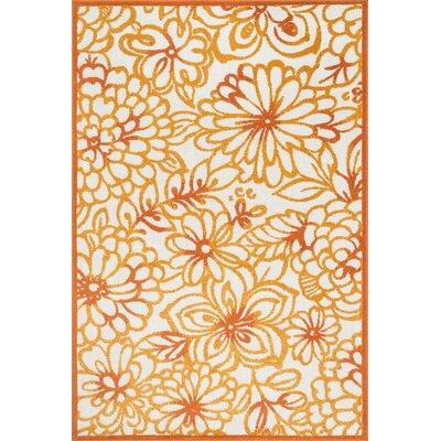 Oasis Orange Indoor/Outdoor Area Rug Rug Size: 71 x 109