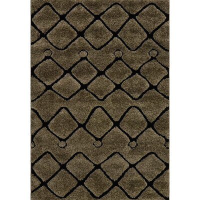 Enchant Brown/Black Area Rug Rug Size: 53 x 77
