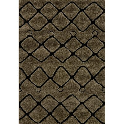 Enchant Brown/Black Area Rug Rug Size: 77 x 106
