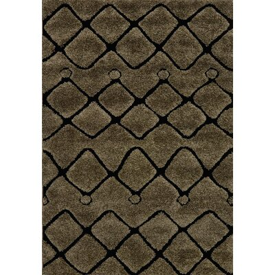 Dania Brown/Black Area Rug Rug Size: Rectangle 77 x 106