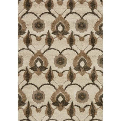 Enchant Brown/Beige Area Rug Rug Size: 77 x 106