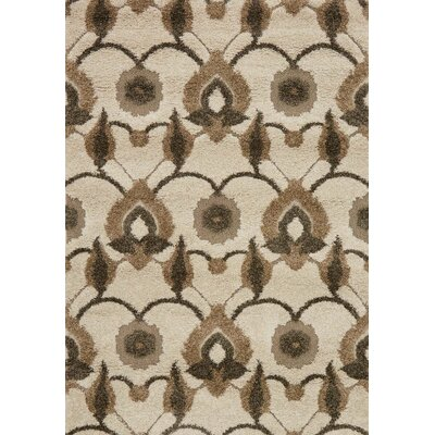 Enchant Brown/Beige Area Rug Rug Size: Rectangle 53 x 77