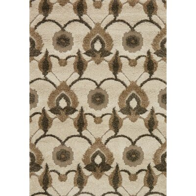 Enchant Brown/Beige Area Rug Rug Size: 310 x 57