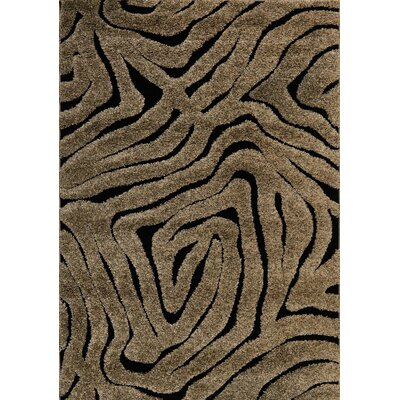 Dania Brown/Black Area Rug Rug Size: Rectangle 53 x 77