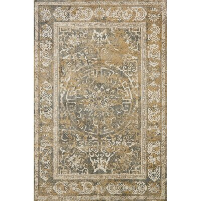 Gray/Beige Area Rug Rug Size: Rectangle 67 x 92