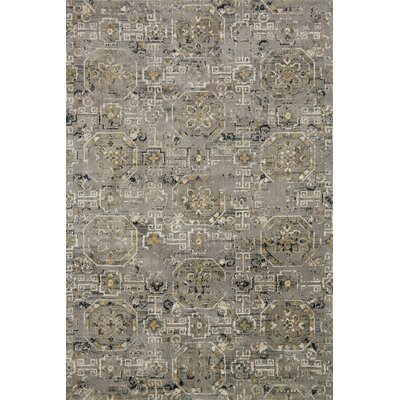 Gray Area Rug Rug Size: Rectangle 39 x 59