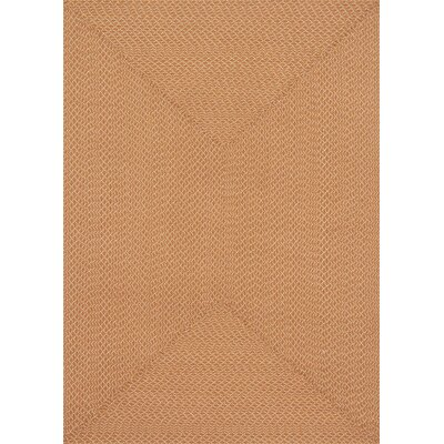 Wylie Hand-Woven Orange Indoor/Outdoor Area Rug Rug Size: 5' x 7'