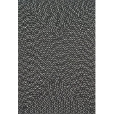Wylie Hand-Woven Charcoal Indoor/Outdoor Area Rug Rug Size: 5 x 7