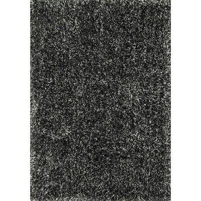 Kendall Shag Charcoal Area Rug Rug Size: Rectangle 79 x 99