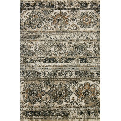 Taupe Area Rug Rug Size: Rectangle 27 x 4