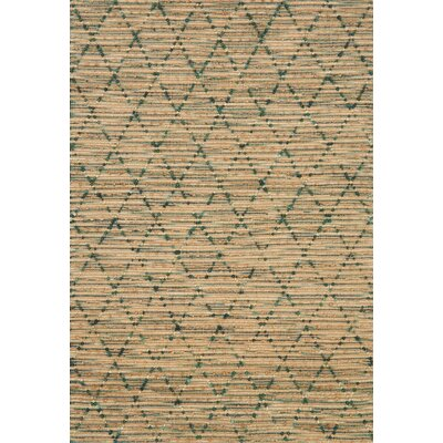 Beacon Hand-Woven Brown/Aqua Area Rug Rug Size: 36 x 56