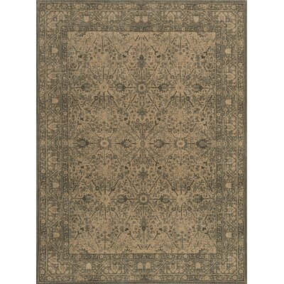 Stanley Hand-Knotted Beige/Fog Area Rug Rug Size: Rectangle 2 x 3
