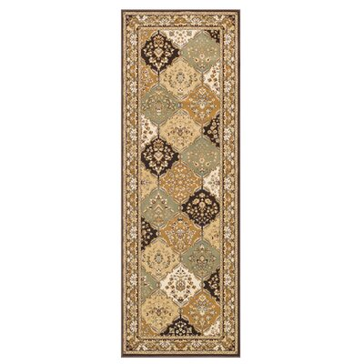 Welbourne Brown/Coffee Area Rug Rug Size: Runner 28 x 77