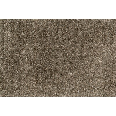 Shepperson Hand-Woven Mocha Area Rug Rug Size: Rectangle 36 x 56