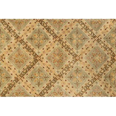 Yerkes Hand-Tufted Sage Green Area Rug Rug Size: Rectangle 5 x 76