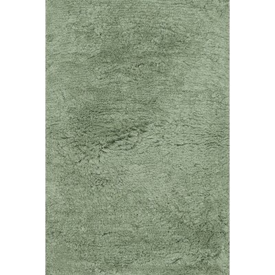 DeGennaro Hand-Tufted Seafoam Green Area Rug Rug Size: Rectangle 23 x 39