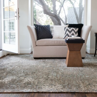 Journey Brown Area Rug Rug Size: 92 x 122