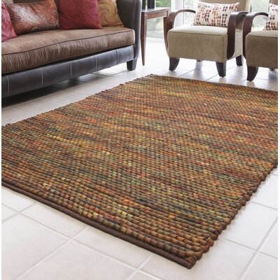 Royce Hand-Woven Brown Area Rug Rug Size: 5 x 76