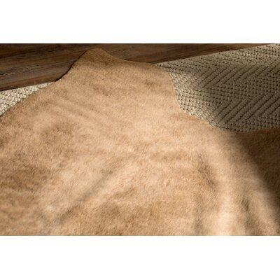 Summer Tan Area Rug Rug Size: 62 x 8