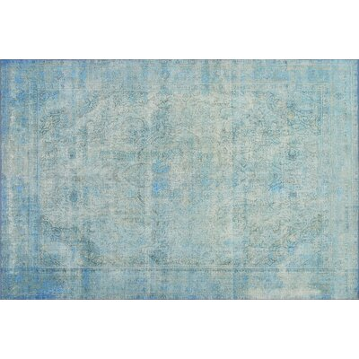 Rakesh Aqua Area Rug� Rug Size: Rectangle 23 x 39
