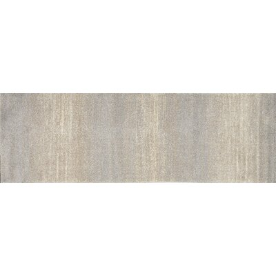 Emory Silver Area Rug Rug Size: Runner 25 x 77