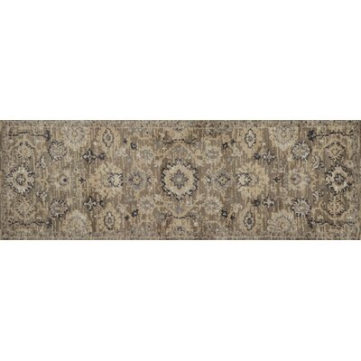 Durfee Brown/Beige Area Rug Rug Size: Runner 26 x 76