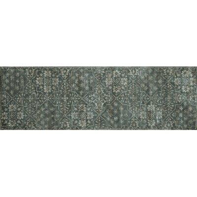 Josephine Gray Area Rug Rug Size: Runner 26 x 76