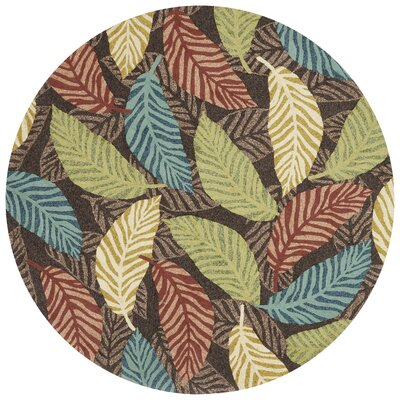 Tropez Hand-Hooked Brown/Green Indoor/Outdoor Area Rug Rug Size: 23 x 39