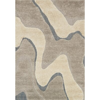 Bigham Gray Area Rug Rug Size: Rectangle 53 x 77