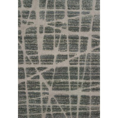 Bigham Gray Area Rug Rug Size: Rectangle 9 x 12