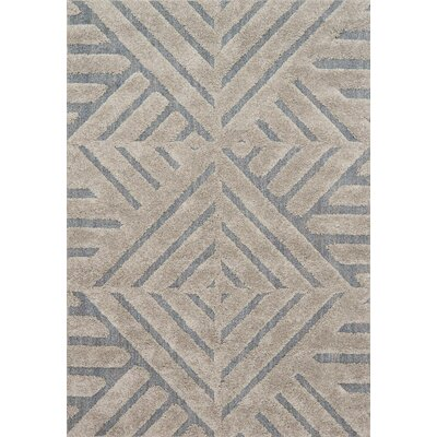 Bigham Gray/Slate Area Rug Rug Size: Rectangle 53 x 77