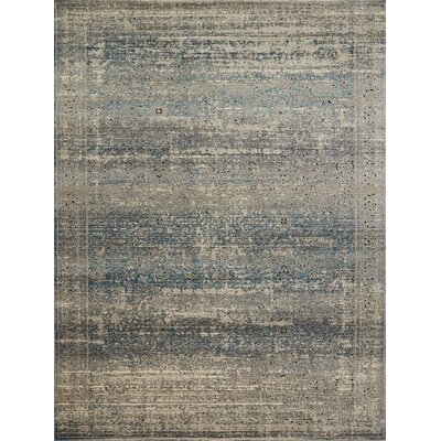 Diez Gray/Blue Area Rug Rug Size: Rectangle 27 x 4