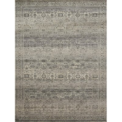 Diez Gray/Charcoal Area Rug Rug Size: Rectangle 27 x 4
