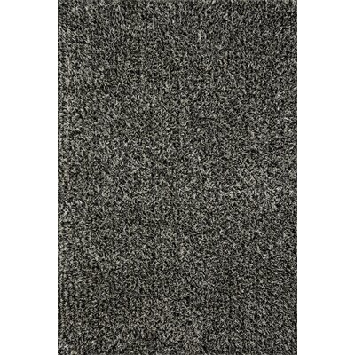 Mattern Shag Salt/Pepper Area Rug Rug Size: Rectangle 36 x 56
