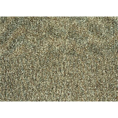 Cleo Hand-Woven Brown/Light Green Area Rug Rug Size: 76 x 96