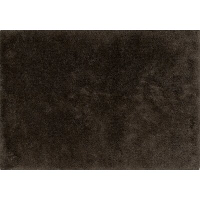 Soud Hand-Tufted Mocha Area Rug Rug Size: Rectangle 5 x 76
