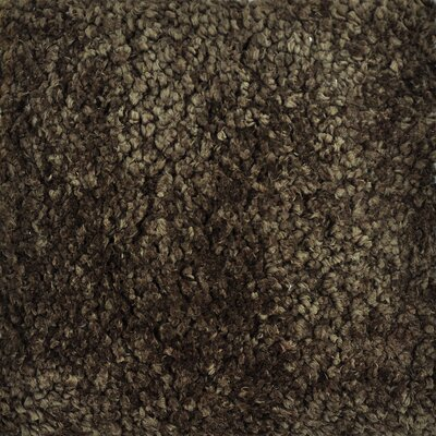 Hera Shag Hand-Tufted Brown/Tan Area Rug Rug Size: 36 x 56
