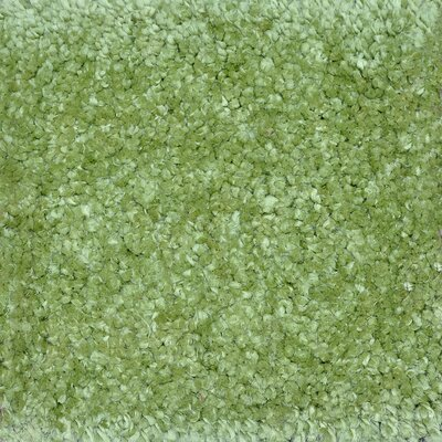 Dadi Hand-Tufted Green Area Rug Rug Size: Rectangle 3'6