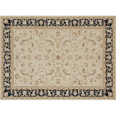 Kirkman Black/Ivory Area Rug Rug Size: Rectangle 53 x 77